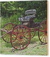 Buggy 11628 Wood Print