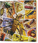 Bugs On Postage Stamps Wood Print