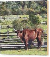 Bull In Pasture Wood Print by Susan Savad