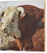 Bull It Is What It Is Wood Print