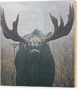 Bull Moose Testing Air For Pheromones Wood Print