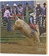 Bull Rider 2 Wood Print by Sean Griffin