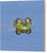 Bullfrog Wood Print