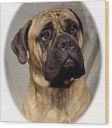 Bullmastiff 28 Wood Print