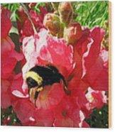 Bumblebee And Snapdragon Wood Print