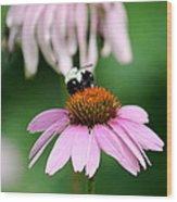 Bumblebee Bliss Wood Print