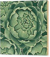 Bunch Of Artichokes Wood Print