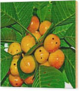 Bunch Of Cherries Wood Print
