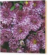 Bunch Of Chrysanths Wood Print