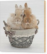Bunnies A Basket Wood Print