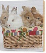 Bunnies In A Basket Wood Print