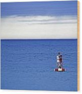 Buoy Off Bass Harbor Head Wood Print