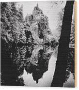 Burg Kriebstein Wood Print