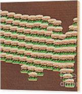 Burger Town Usa Map Brown Wood Print