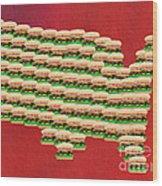 Burger Town Usa Map Red Wood Print