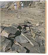 Burgess Shale Fossil Quarry Wood Print