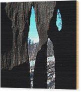 Burned Trees 10 Wood Print