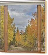 Burning Autumn Aspens Back Country Colorado Window View Wood Print