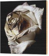 Burnt Tea Rose Wood Print