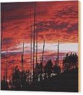 Burnt Trees Against A Sunset Wood Print