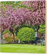 Bursting Blossoms Wood Print