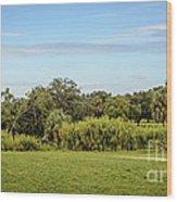 Busch Gardens Landscape Wood Print