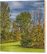 Busch Wildlife Swampy Autumn Wood Print by Bill Tiepelman