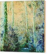 Bush Trail At Sunrise Wood Print