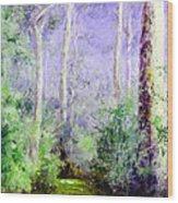 Bush Trail At The Afternoon Wood Print