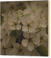 Bushel Of Flowers Wood Print