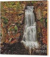 Bushkill Main Falls Wood Print