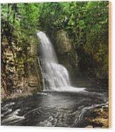 Bushkill Waterfalls Wood Print