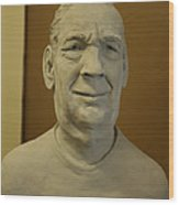 Bust Sculpture Wood Print by Terri  Meyer