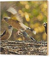Busy Birds Wood Print