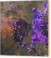 Busy Spicebush Butterfly Wood Print by J Larry Walker