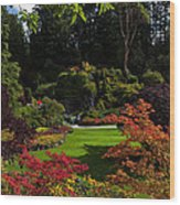 Butchart Gardens - Sunken Garden Wood Print by Matt Dobson