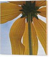 Butterfingers Wood Print