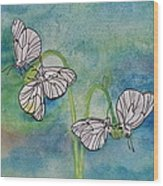 Butterflies Hanging Out Wood Print