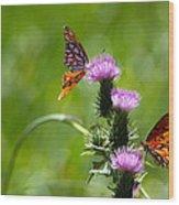 Butterflies On Thistles Wood Print