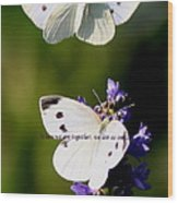 Butterfly - Cabbage White - As One Wood Print