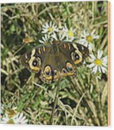 Butterfly And Flowers Wood Print