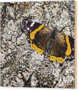 Butterfly Bark Wood Print