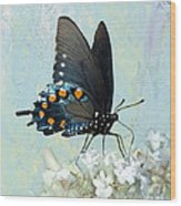 Butterfly Candy Wood Print
