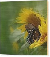 Butterfly Dream Wood Print