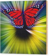Butterfly Fly Wood Print