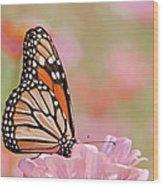 Butterfly Garden Iv Wood Print