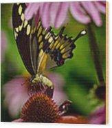 Butterfly Heaven Wood Print