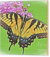 Butterfly In Candyland Wood Print