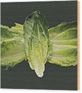 Butterfly Lettuce Wood Print