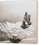Butterfly On Flower Bw Wood Print